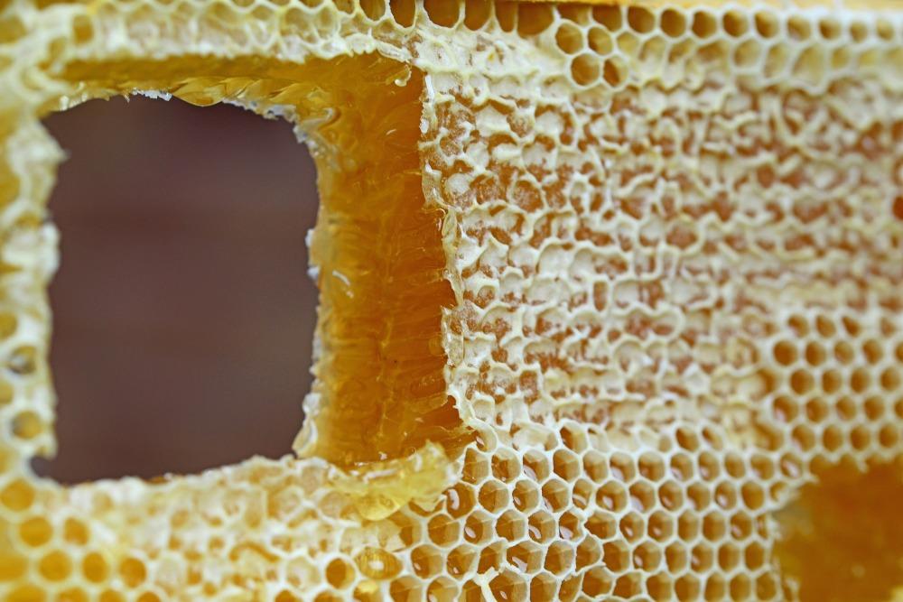 honeycomb-347558_1920